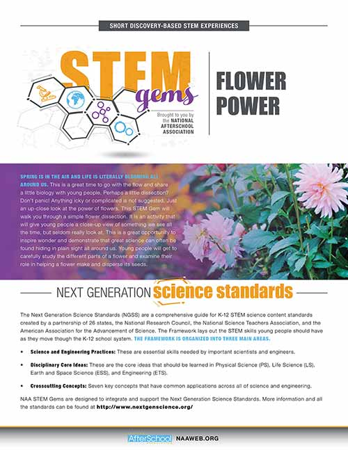 STEMGems FlowerPower 1