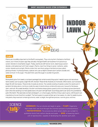 STEMGems-IndoorLawn-1