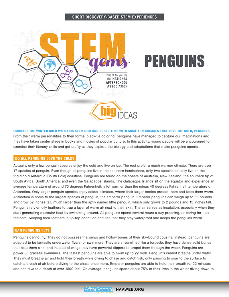 STEMGems Penguins 1