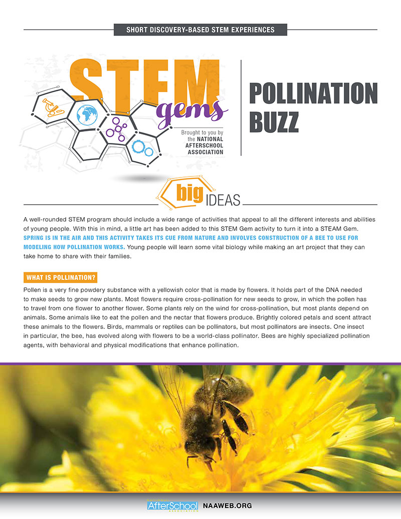 STEMGems PollinationBuzz 1