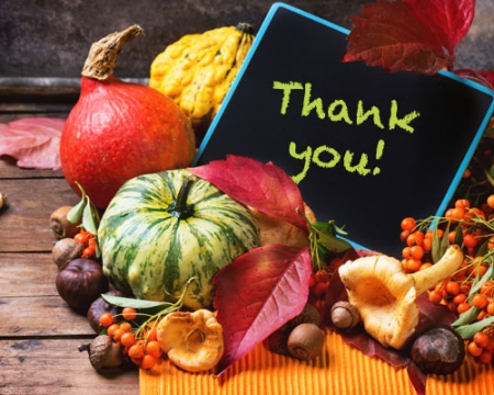 Gratitude: Not Just for Thanksgiving